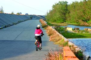 【雲林‧四湖】綠色一線天自行車道