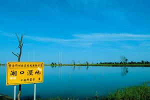 【雲林‧口湖】湖口溼地
